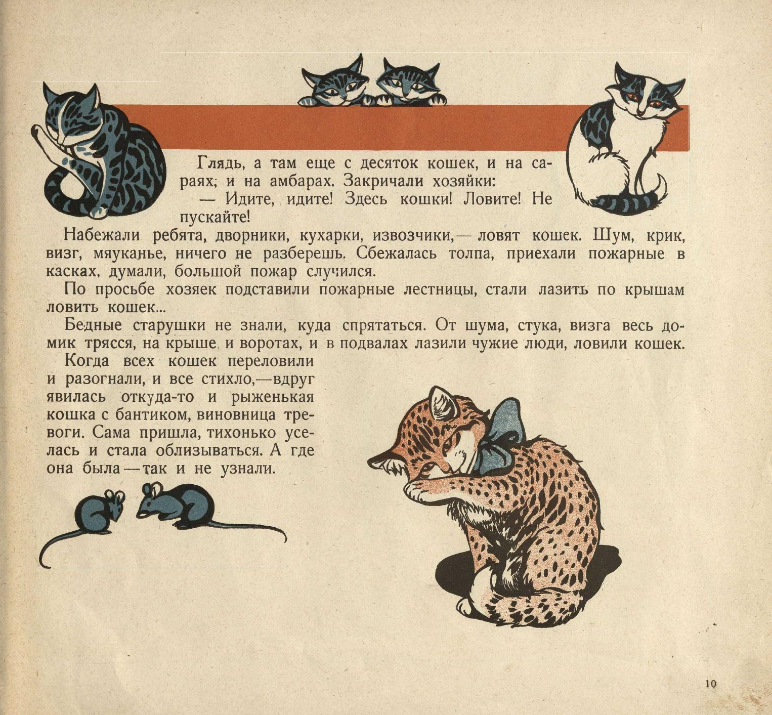 Казмин Пропала кошка
